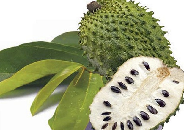 7 Science-Based Benefits of Soursop for Cancer Treatments