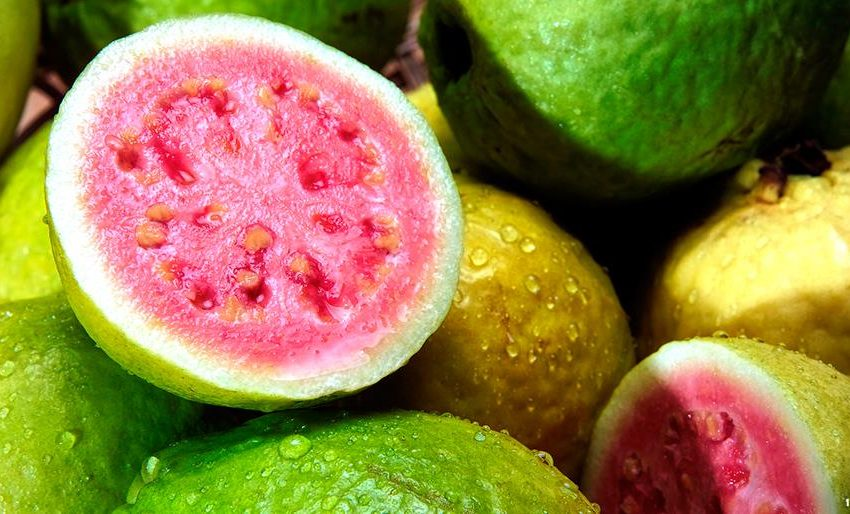 Miraculous Benefits of Guava for Anemia Treatments #Proven