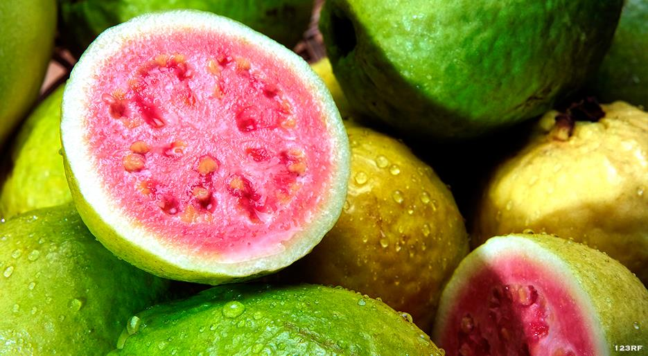 Miraculous Benefits of Guava for Anemia Treatments #Proven - Dr Heben
