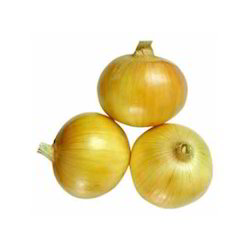 10 Health Benefits of Yellow Onion You Must Know