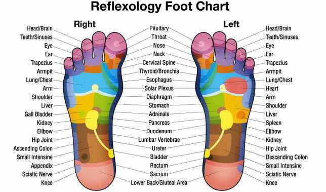 8 Health Benefits of Chinese Foot Reflexology and Recommendation