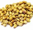 11 Health Benefits of Coriander Seeds Soaked in Water