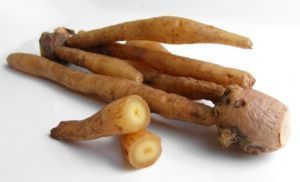 health benefits of fingerroot