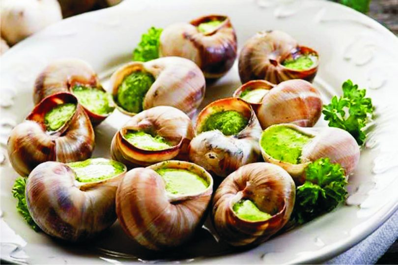 8 Unexpected Health Benefits of Snail during Pregnancy