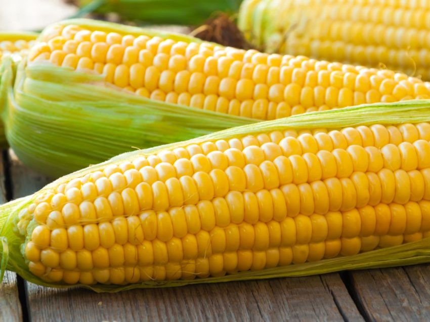 Health Benefits of Corn for Bodybuilding (Get Ripped 6-Packs Abs )