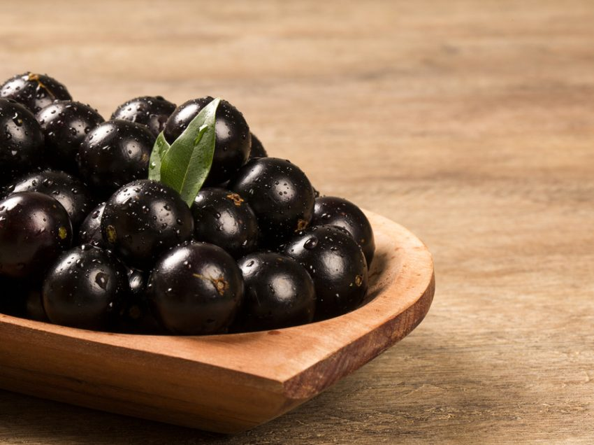 Top 10 Health Benefits of Jaboticaba – Rare Fruit from Brazil