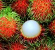 10 Unexpected Rambutan Health Benefits for Pregnant