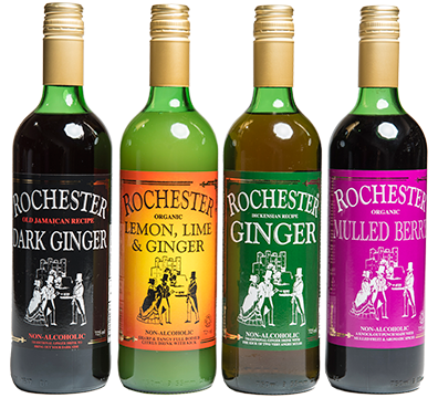 10 Unexpected Health Benefits of Rochester Ginger Wine