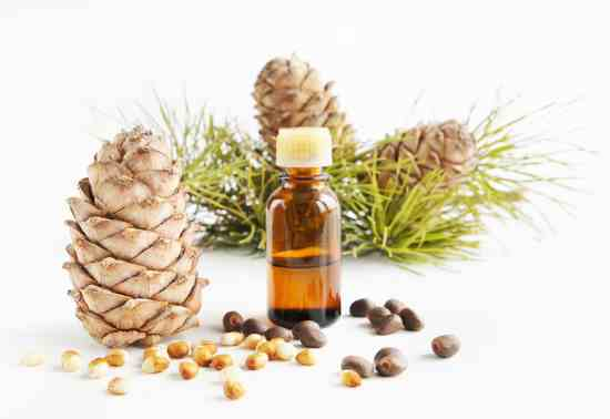 11 Health Benefits of Red Pine Needle Oil (#1 Chlorophyll Source)