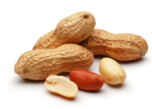13 Science-Backed Health Benefits of Eating Raw Groundnuts