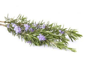 10 Amazing Health Benefits of Rosemary for Skin