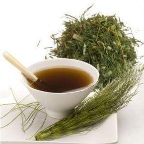 14 Super Health Benefits of Drinking Horsetail Tea