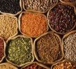 15 Scientifically Health Benefits of Grains and Pulses