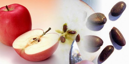 4 Unknown Health Benefits of Apple Seeds