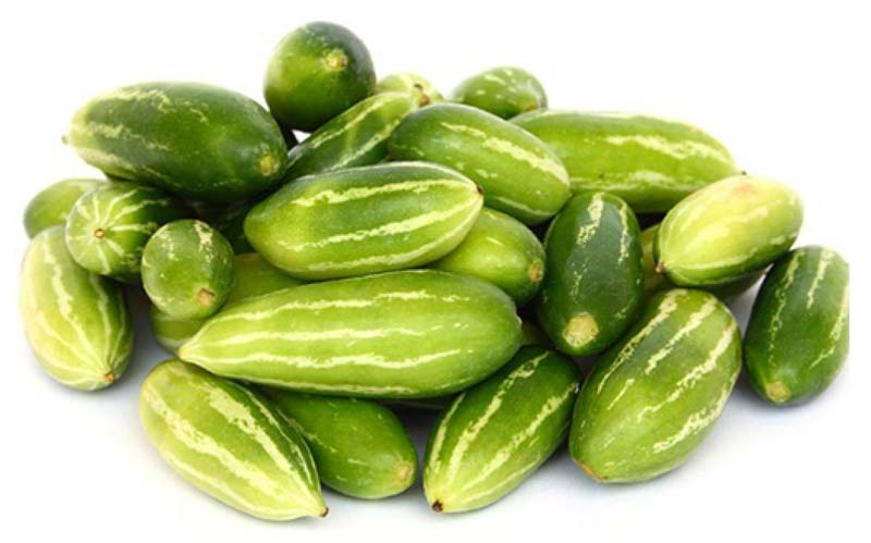 10 Health Benefits of Tindora Vegetable – Ivy Gourd from India