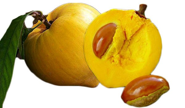 Top 10 Health Benefits of Canistel Fruit