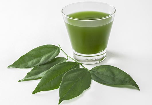 23 Health Benefits of Chlorophyll Drink #1 for Weight Loss
