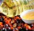 13 Amazing Health Benefits of Malaysian Palm Oil
