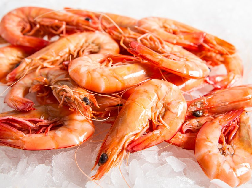Here's The Prawn Benefits for Hair and How to Apply It