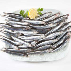 20 Incredible Health Benefits of Silver Cyprinid