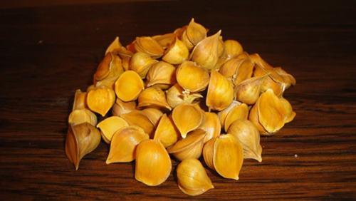 10 Incredible Health Benefits of Japanese Garlic