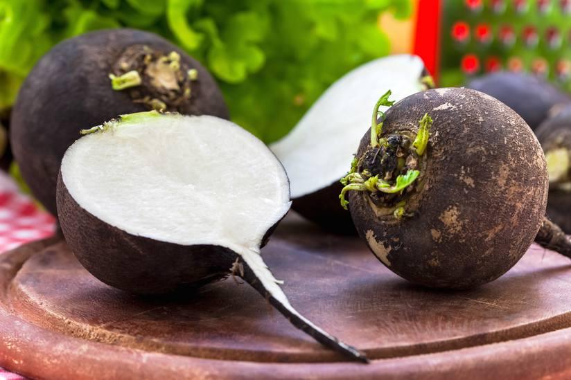 20 Powerful Health Benefits of Black Radish You Should Know