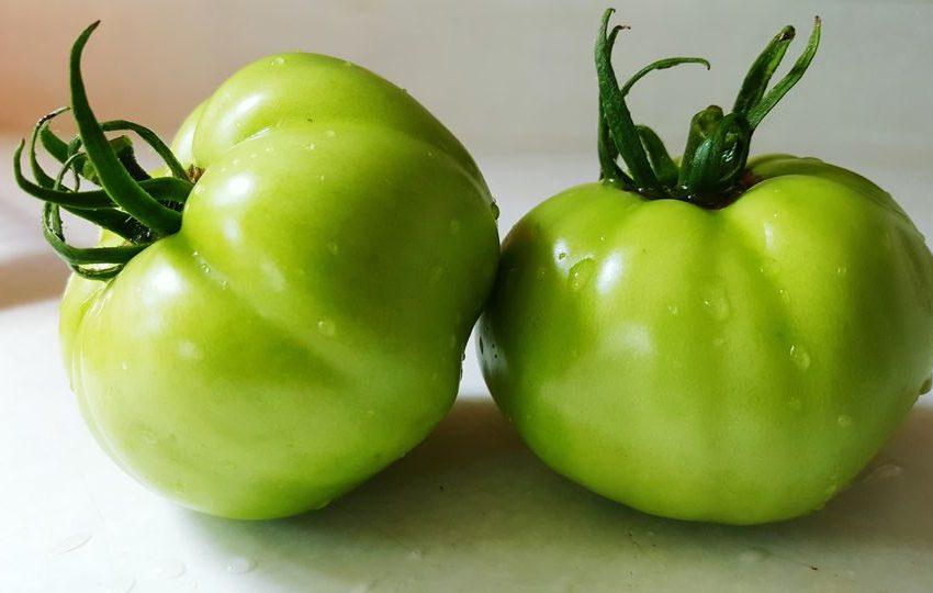 10 Impressive Health Benefits of Green Tomatoes