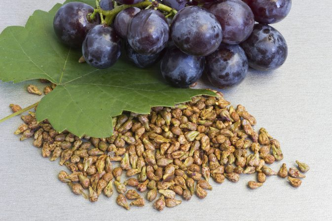 20 Surprising Health Benefits of Grape Seeds Extract