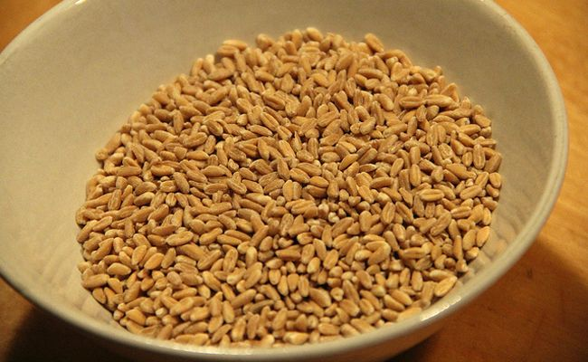 15 Greatest Health Benefits of Farro #1 Anti Oxidant