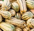 17 Extraordinary Health Benefits of Delicata Squash