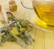 10 Health Benefits of Greek Mountain Tea #1 Stress Reliever
