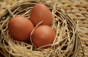What You Should Know About Brown Eggs - 18 Benefits