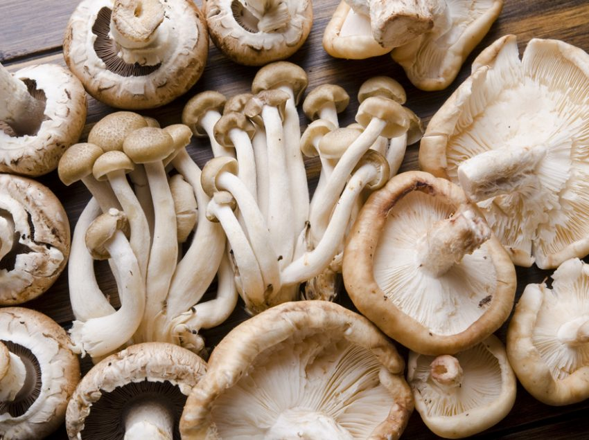 9 Health Benefits of Mushroom during Pregnancy