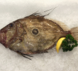 12 Incredible Health Benefits of Dory Fish for Body