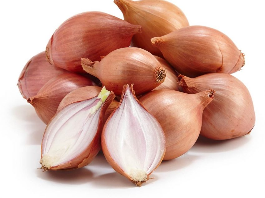 8 Benefits of Shallot for Breast Enlargement and Health
