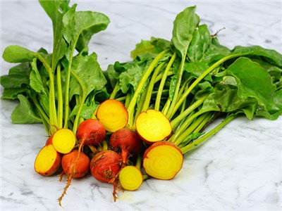15 Health Benefits of Eating Golden Beets – Vitamin C Natural Source