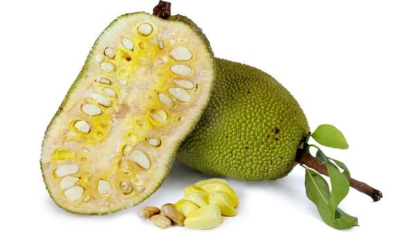 16 Incredible Jackfruit Benefits for Diabetes Prevention
