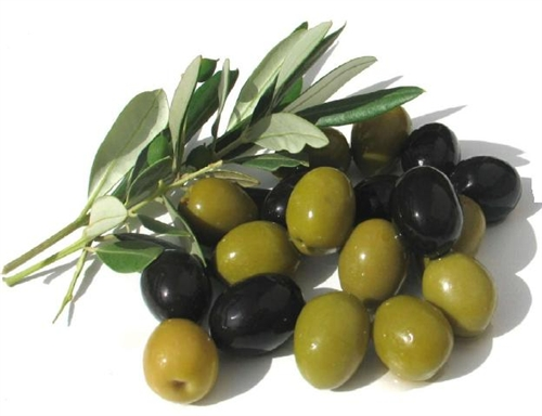 31 Science-Based Health Benefits of Olive Leaves Extract