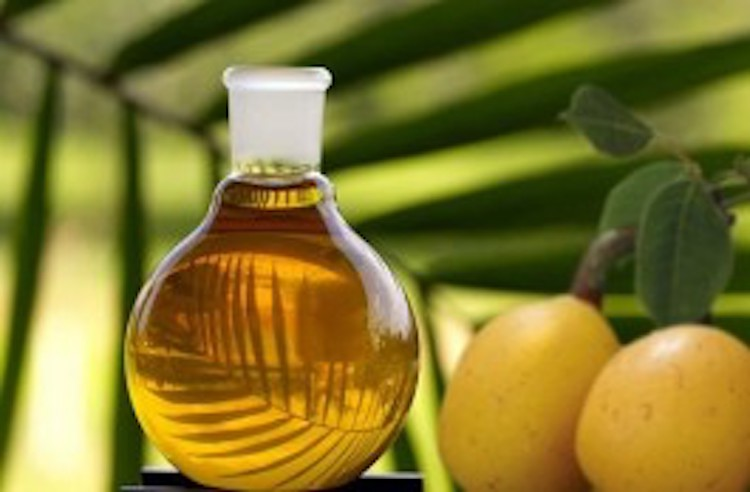 Health Benefits of Marula Oil – Beauty Secret from Africa