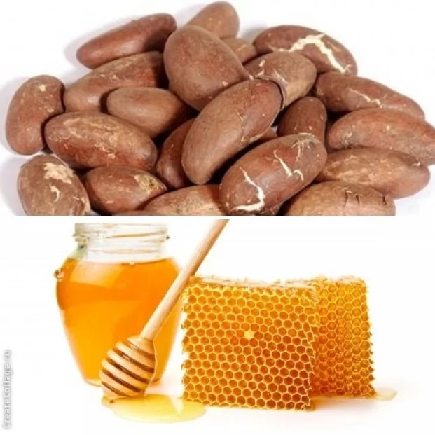 Health Benefits of Bitter Kola and Honey When You Mix Them Together