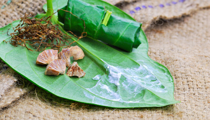 Health Benefits of Chewing Paan and Betel Leaves Nobody Told You About