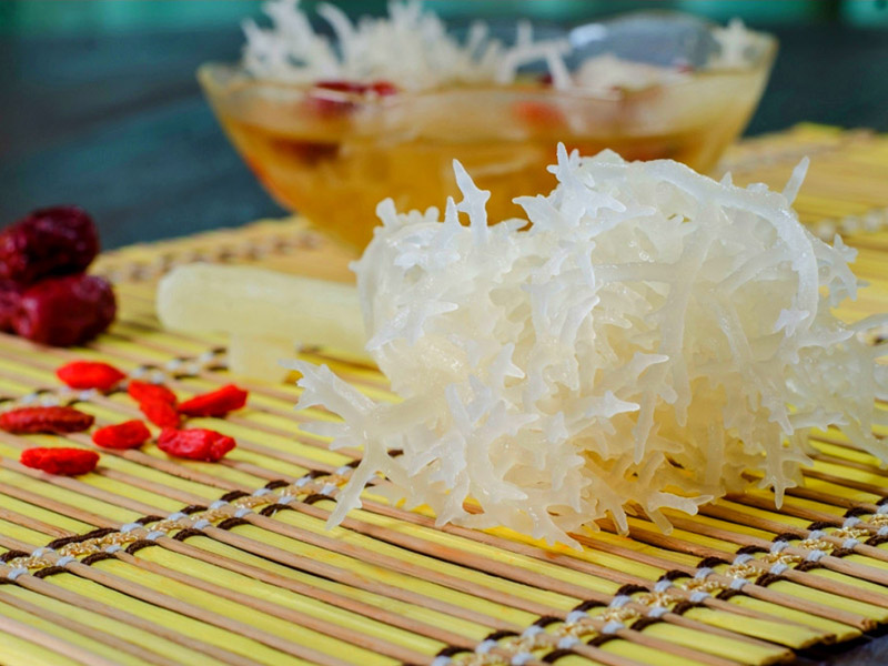 12 Nutritious Health Benefits of Sea Bird Nest for Skin And Body