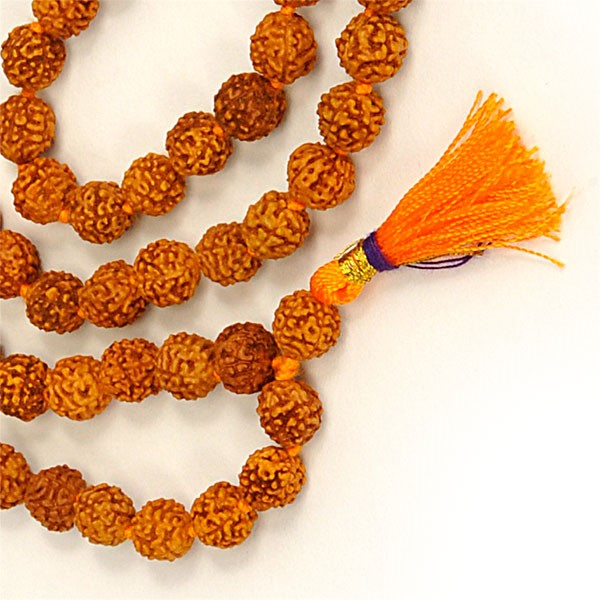 Powerful Health Benefits of Rudraksha Beads to Wear Everyday