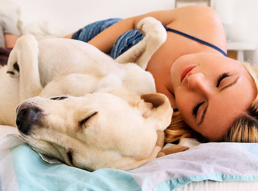 Benefits of Dog Sleeping With You – Is It Good for You?