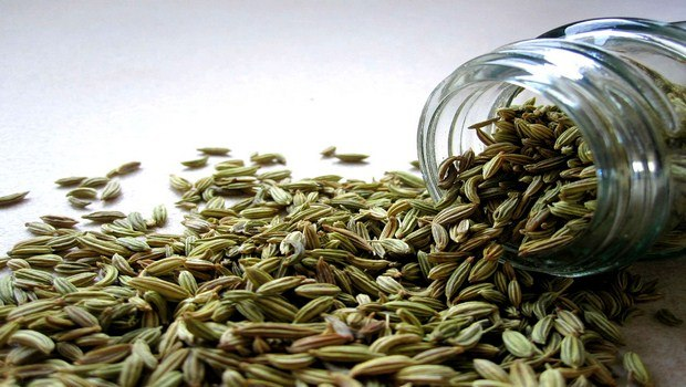 10 Unbelievable Benefits of Fennel Seeds for Breast Enlargement
