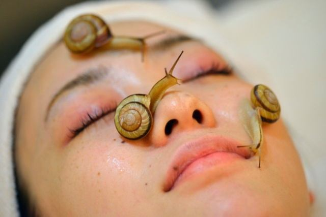 Unexpected Benefits of Snail Slime On the Skin #Beauty Tips