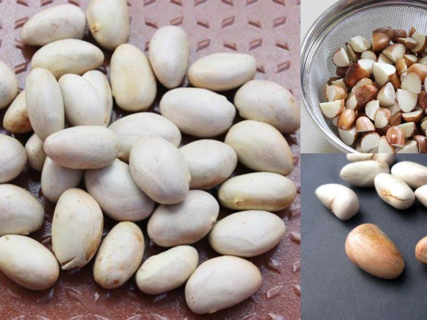 Remarkable Benefits of Jackfruit Seeds during Pregnancy!