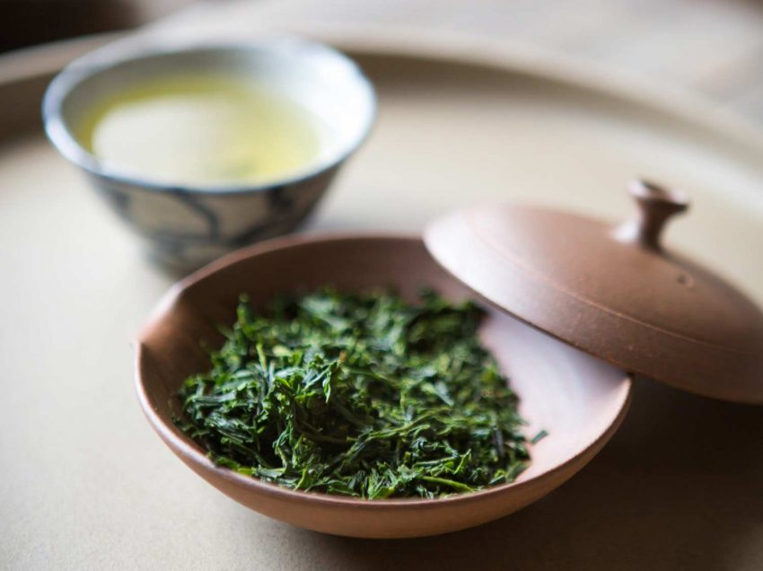 Find Out Excellent Health Benefits of Japanese Sencha Tea Here!