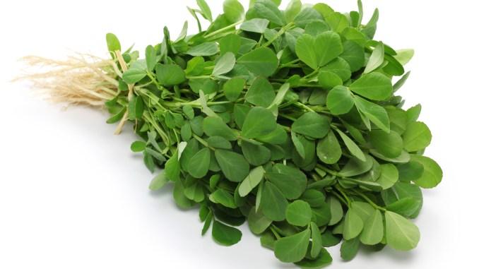 Amazing Benefits of Fenugreek Leaves during Pregnancy