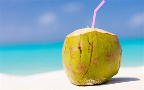 10 Simple Benefits of Coconut Water for Stomach During Poisonous
